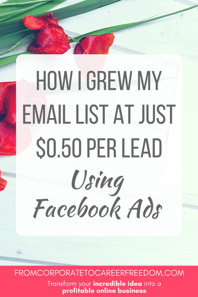 Case Study: Step by step look at how I used Facebook ads to grow my email list at just $0.50 per lead. Facebook ads. Email list. List building.