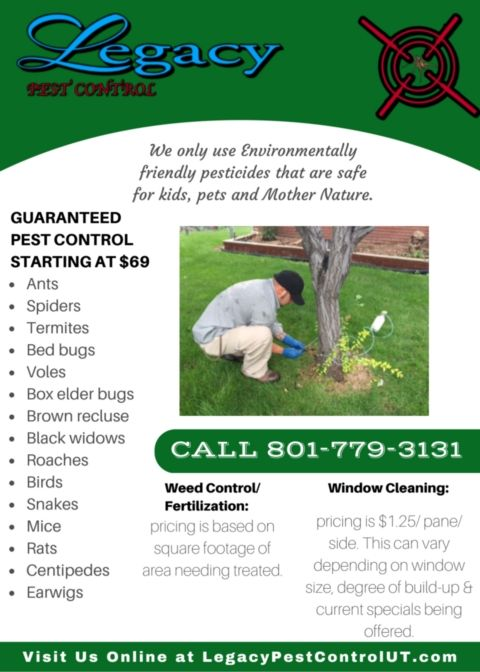 Legacy Pest Control is a family owned extermination business in Ogden, Utah. If your home has become a choice location to ants, termites, rodents or any other pests, our professional exterminators will get rid of your unwanted intruders – and keep them from coming back. http://qoo.ly/6tt9h/0