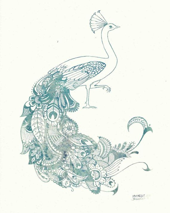 Line Drawing Of Peacock : Best images about peacock line drawings on pinterest