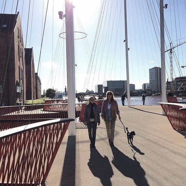 https://flic.kr/p/yJEWga | #Copenhagen #København #sharecph #voreskbh #delditkbh #cirkelbroen |   12 Likes on Instagram