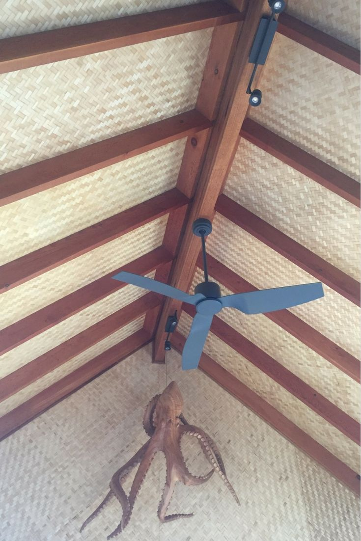 Best 25+ Bamboo ceiling ideas on Pinterest | Bamboo roof ...