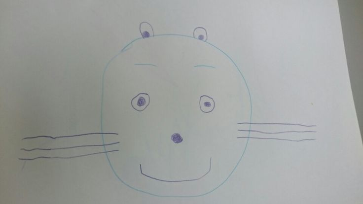 Line Drawing Of A Tiger S Face : Best olivia drawing images art drawings draw and
