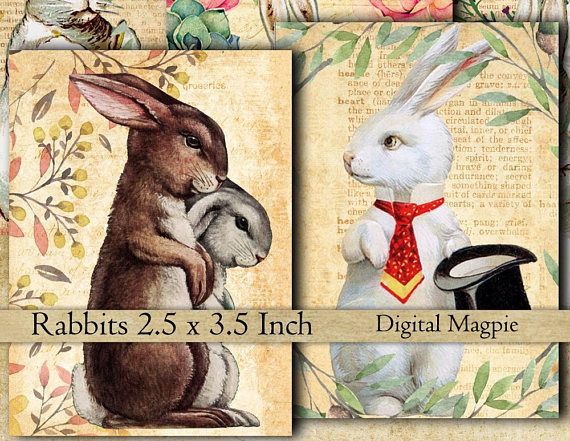 16 Rabbits vintage images collage sheet bunnies instant