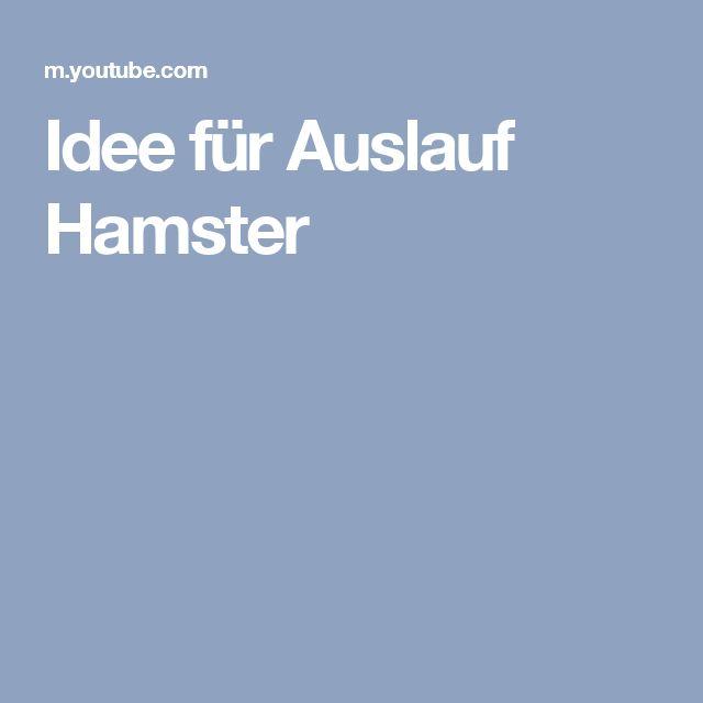 Idee für Auslauf Hamster