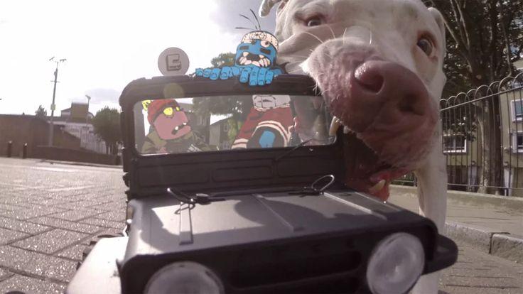 Amaro and Walden's Joyride on Vimeo