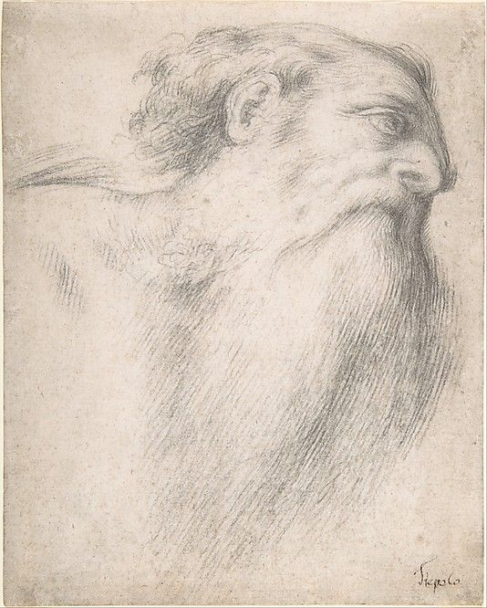 Head of a Bearded Man  Lorenzo Lotto  (Italian, Venice ca. 1480–1556 Loreto