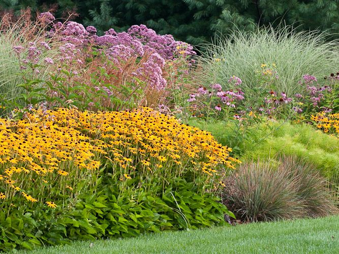 Garden bed with perennials grasses garden ideas for Grasses for flower beds