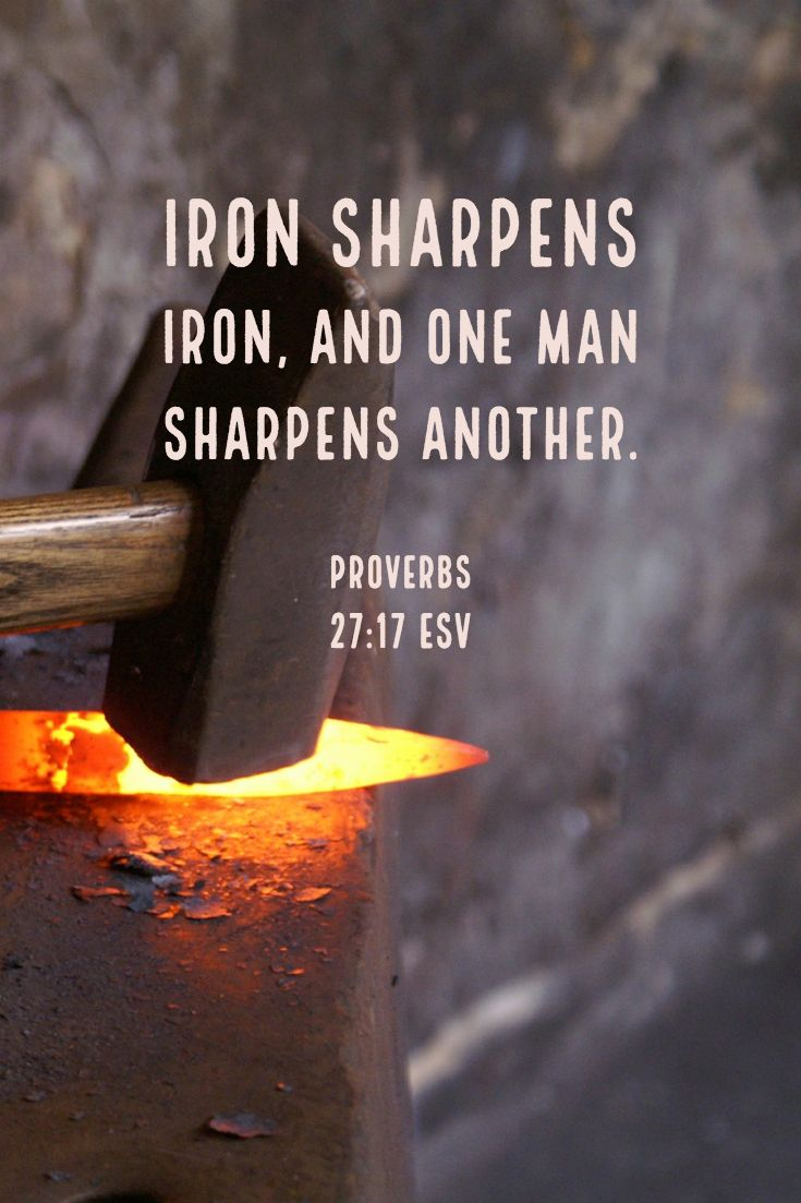 Image result for as iron sharpens iron esv