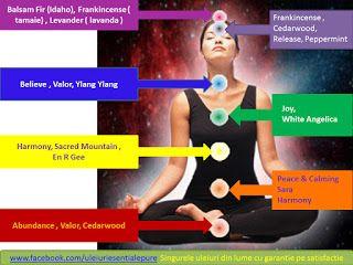 vindecarea e in tine: 20 de uleiuri esențiale care amplifica starea de m...