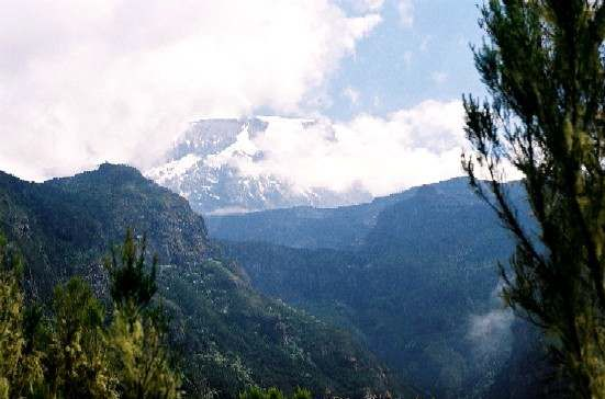 Mt Kilimanjaro Umbwe Route - 9 day expedition
