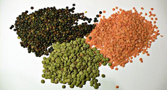 Lentil - kacang lentil. Apa itu kacang lentil. Simakjuga manfaat mengkonsumsi kacang lentil
