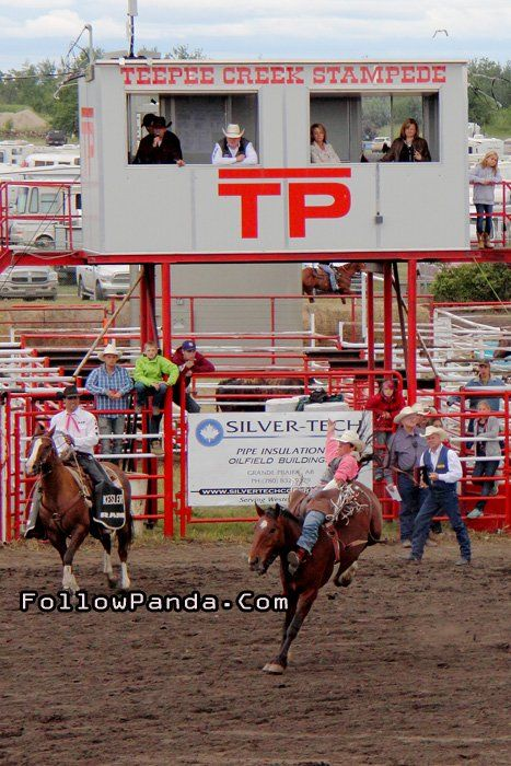 Cowboy in Pink Shirt at Teepee Creek Stampede Rodeo Event - County of Grande Prairie, Alberta, Canada | FollowPanda.Com
