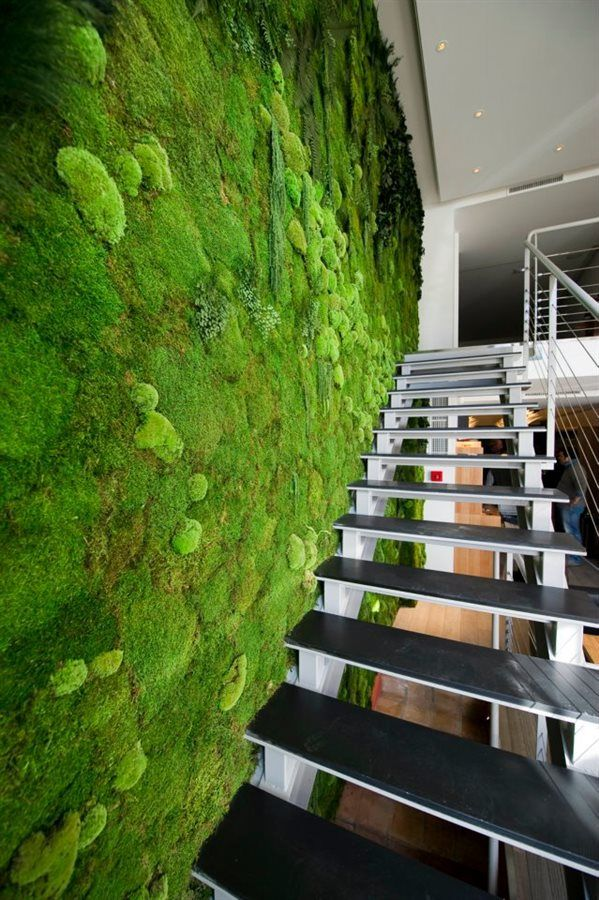 The flat moss wall is versatile, livens up bedrooms and dining areas and transforms dreary conference spaces.When this wall is around, it's easy to forget that you're not on a densely planted, lusciously soft clearing in the Nordic tundra.