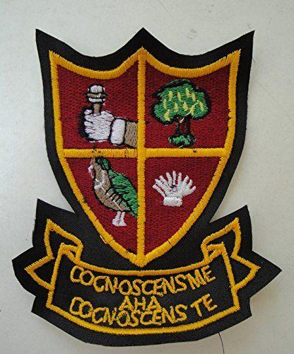 Alan Partridge Blazer Badge: Amazon.co.uk: Kitchen & Home