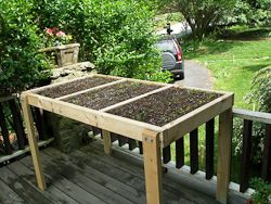 Salad tables and salad boxes