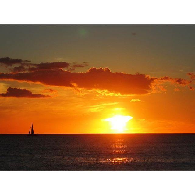 【southpoint_hawaii】さんのInstagramをピンしています。 《明けましておめでとうございます 本年もどうぞよろしくお願い致します 皆様にとって、素敵な一年になりますように✨✨ #ハワイ #ハワイアン #西海岸 #コースタルリビング #ハワイアン雑貨 #インテリア #リゾート #バケーション #海 #ビーチ #フラ  #マリン #サーフィン #マリン雑貨 #アジアン #カイルア #ハレイワ #プルメリア #カリフォルニアスタイル #ビーチハウス #海のある暮らし #バリ #朝日  #新年》