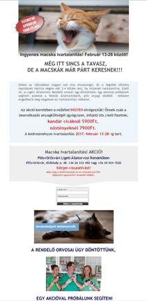 Weboldal megvalósít - megvalosit .hu Állatorvosi oldal Serif WebPlusX8  programmal