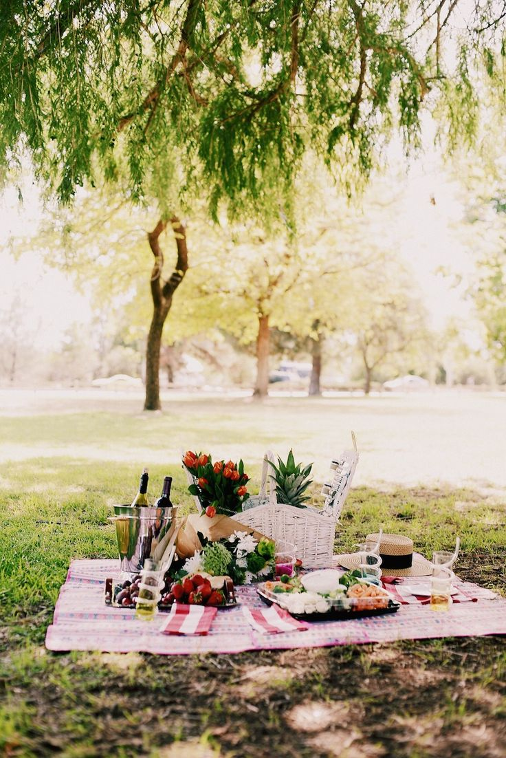 Picnic Style, Beautiful Picnic Set Up, Mom & Son Style, Alexa Chung for M&S, Floral Dress, Denim Espadrilles, via: HallieDaily