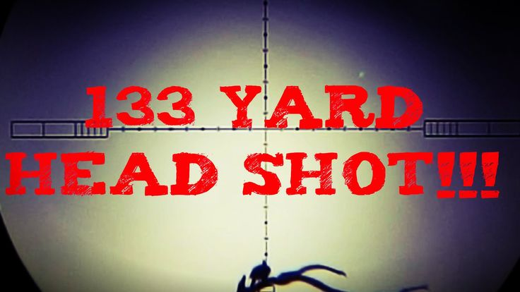 133 Yards Headshot with the Daystate Wolverine