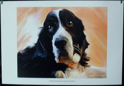 $19.99  DOG Pets ART Print Springer BY Robert Mcclintock   eBay #dog #pets #walldecor