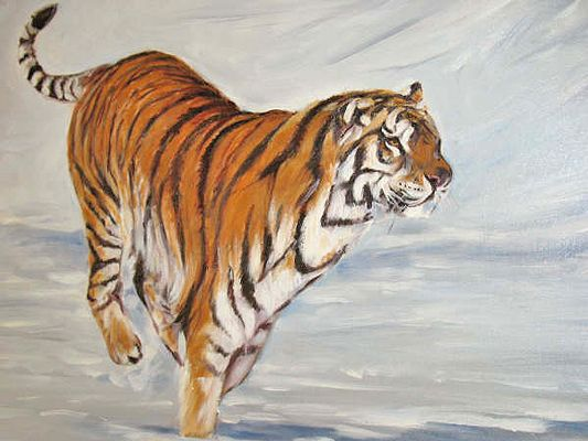 Tiger Paintings On Canvas | ... Praise You About Your Unique Wild Life Paintings Or Your Money Back