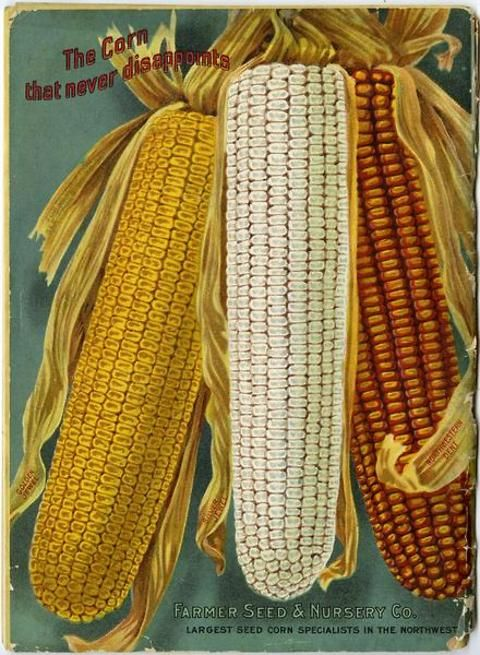 """Three ears of """"the corn that never disappoints"""" fill the space on the back cover of the 1914 Farmer Seed & Nursery Co. catalog.  Golden Jewel, Silver Jewel, and Northwestern Dent are the varieties beautifully rendered and marketed for sale here.  Farmer Seed & Nursery originated in Faribault, MN in 1888. Andersen Horticultural Library hosts a collection of vintage Farmer Seed & Nursery catalogs."""