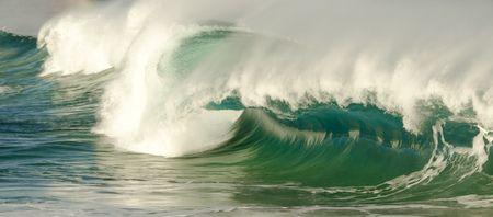 Wyadup and Injidup Waves