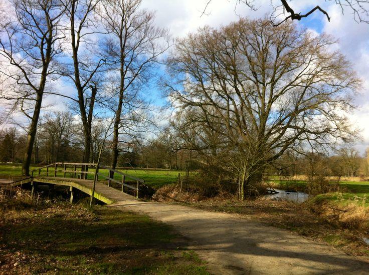 De mooie omgeving van ons chalet Markelo. Landgoed Twickel. Je kunt er uren wandelen. Wij lopen er met Puck onze vizsla.