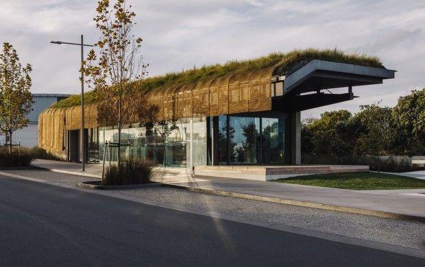 Cobertura verde - Aeroporto na nova Zelândia
