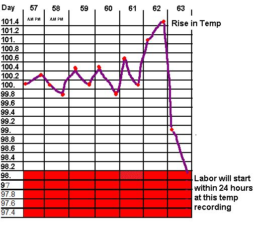 Taking your dogs temperature to determine when possible labor will begin.  I need to print out a temp chart.  Always just write it on paper and then lose the paper.  :)