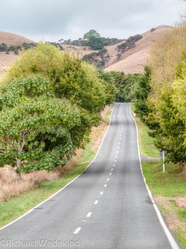 The long way home is the only way home - Waiheke Island.