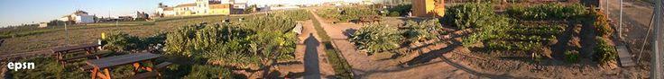 Una panorámcia de los huertos tomada por un hortelano. Gracias por el aporte!!! :)