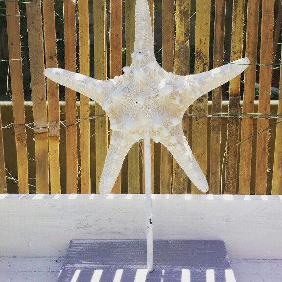 Starfish present for mothersday