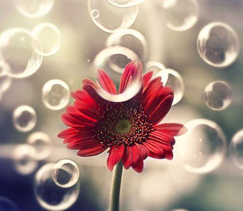 Η ευτυχία δεν είναι κάτι που θα έρθει, όταν υπάρξουν οι προϋποθέσεις. Είναι αυτό που έχουμε μέσα μας.