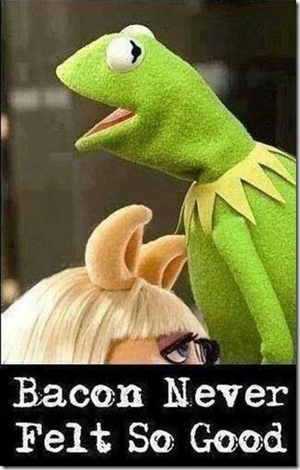 Was Kermit sagt