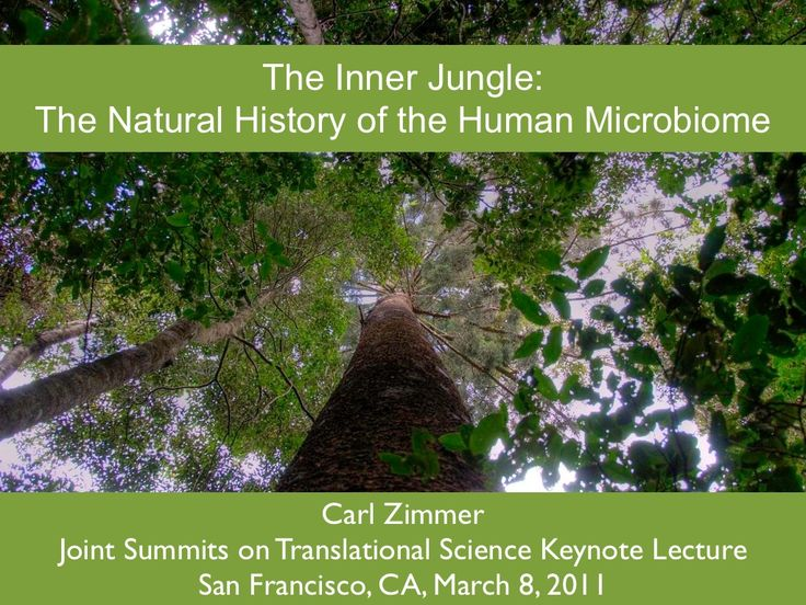 The Human Jungle: Exploring the Microbiome by Carl Zimmer via slideshare