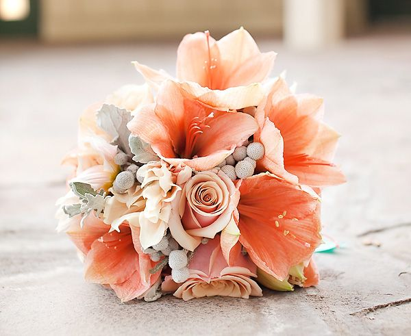 gorgeous bouquet of coral peach amaryllis, blush pink roses and dahilas, dusty miller leaves, etc. Courtney! Lookit this..