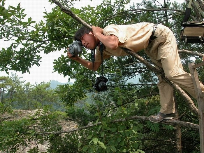 Photography - NOT AN EASY JOB !!! | See More Pictures
