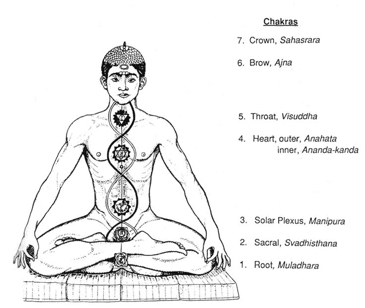 Chakras  Ley Lines and The Meaning Of Adam