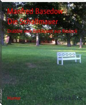 Manfred Basedow: Die Schallmauer