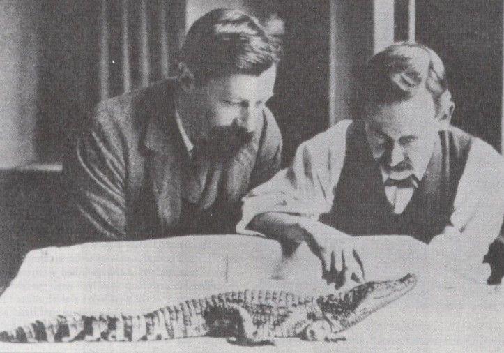 Gaskell ed un suo assistente con uno dei loro modelli animali (un coccodrillo)