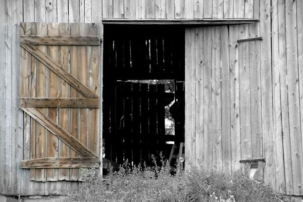 Old Barn Door Wall Mural Barn Doors Pinterest Doors