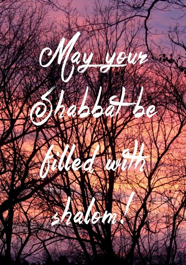May your Shabbat be filled with shalom! | Land of Honey
