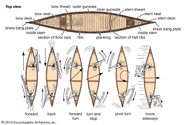Art:A bird's eye view of a traditional wood and canvas canoe (top), reveals its parts in detail. The diagrams of the modern canoe show the directions of the strokes required to move the canoe in different ways.