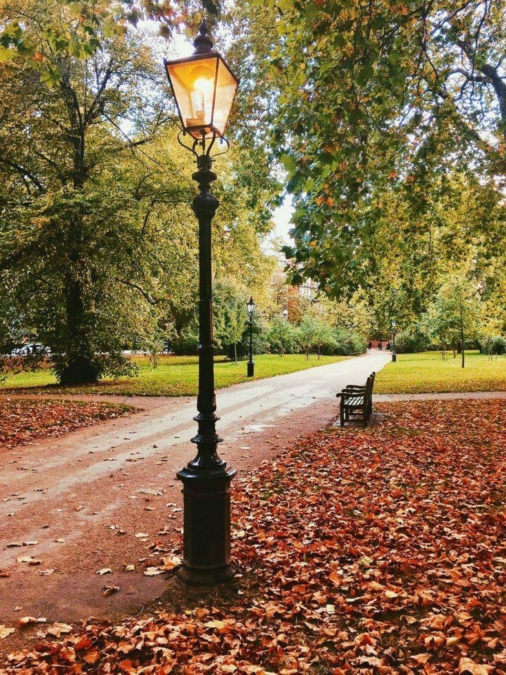 Autumn  Hyde Park, London