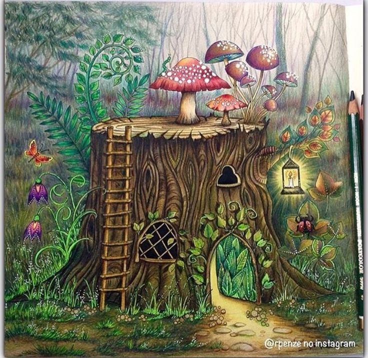 556 Best Enchanted Forest Johanna Basford Images On