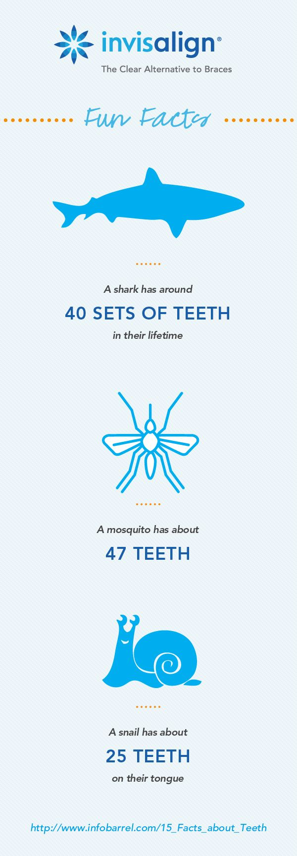 We didn't even know mosquitos and snails had teeth! Wonder if they need a dentist? http://www.myazsmile.com/