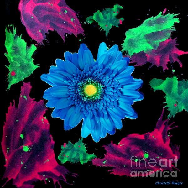 Splash Of Gerbera Digital Art by Christelle Burger - Splash Of Gerbera Fine Art Prints and Posters for Salefineartamerica.com
