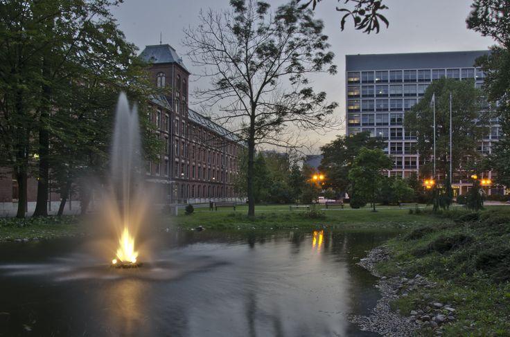 Kampus Politechniki Łódzkiej.