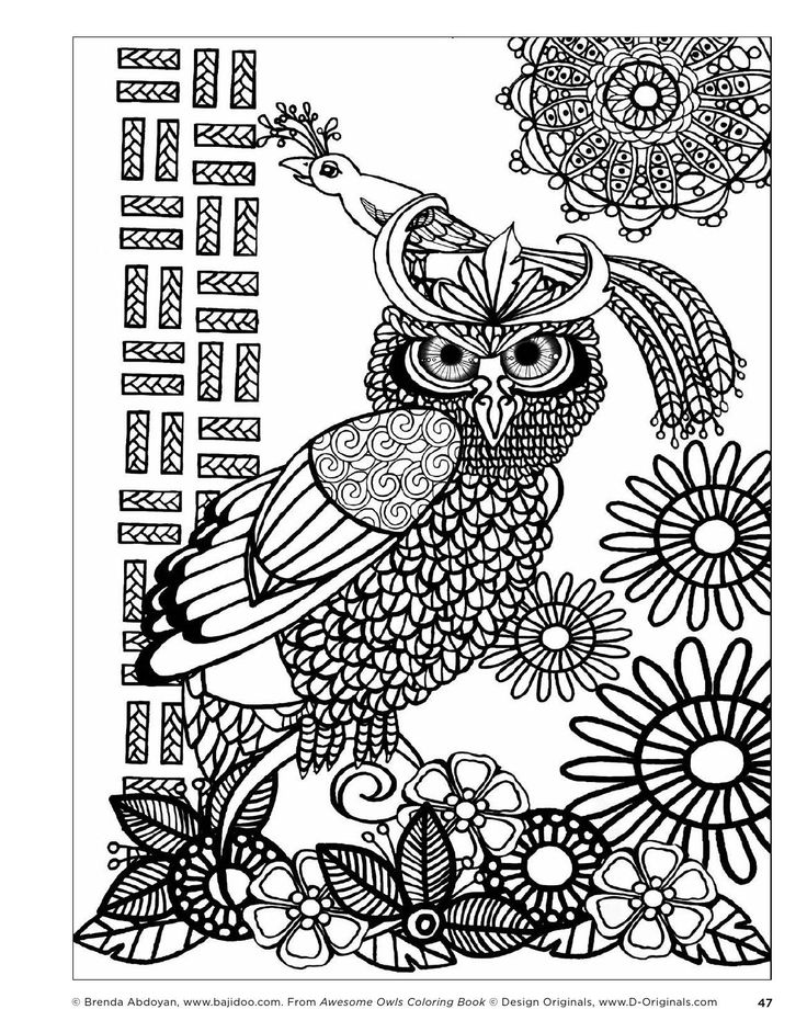 1000 images about adult colouring owls birds Colouring books for adults uk